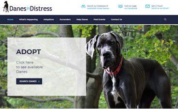 dog rescue website design