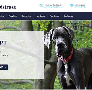 dog rescue website design